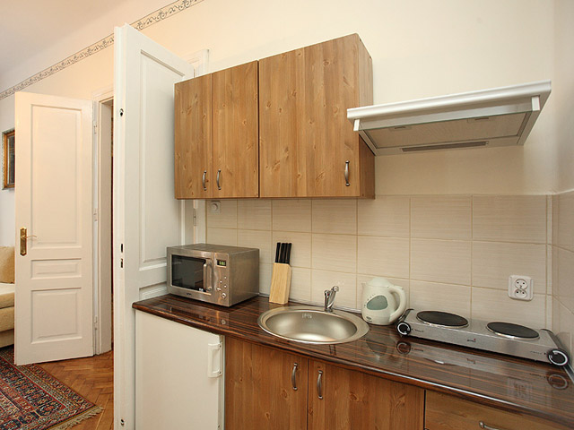 Fully equipped kitchen in 3 star Krakow apartment
