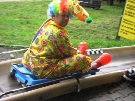 Stag in a clown suit riding a bobsled
