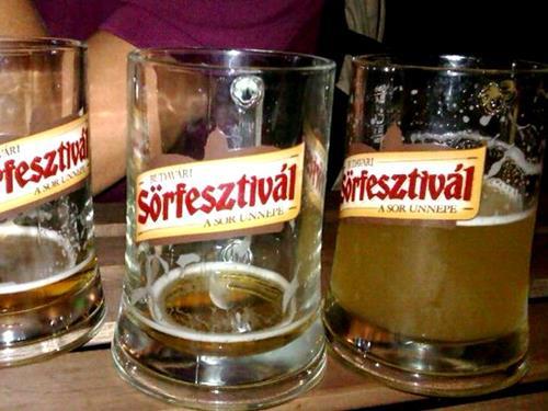 Budapest beer festival castle