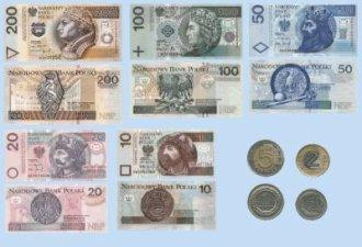 Collage of polish money