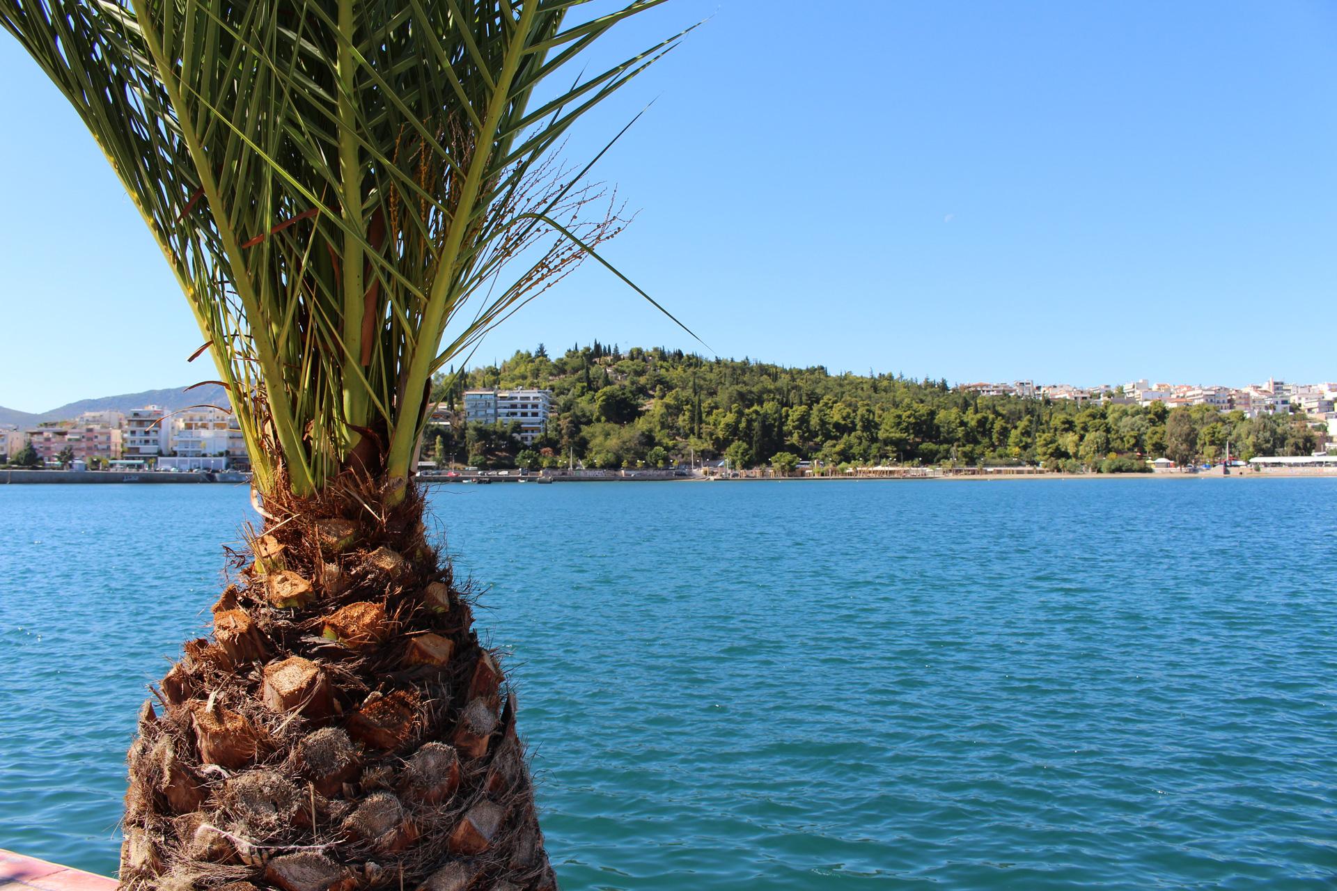 Island Tour – Cruise Ship Athens activity